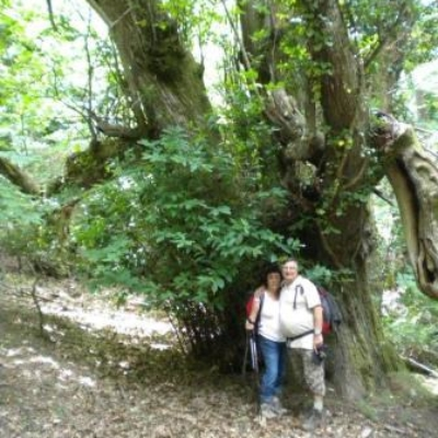 Randonnée à Cabasson le 10 juin 2012