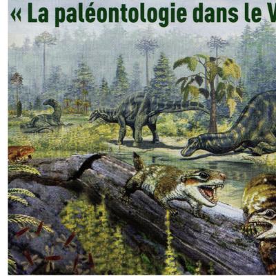 """VISITE EXPOSITION """"La paléontologie dans le Var"""" Muséum d'Histoire Naturelle 17 janvier 2017"""