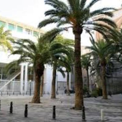 REPAS DE NOEL 18 décembre 2019